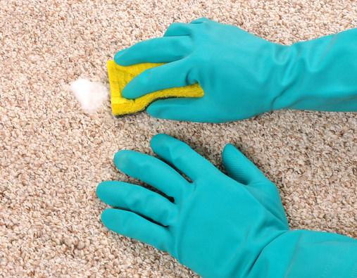 Carpet Care And Maintenance Tips Carpet Care And Maintenance Tips
